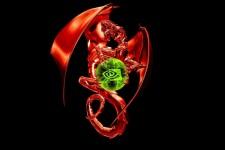 Dragon Holding NVidia Logo
